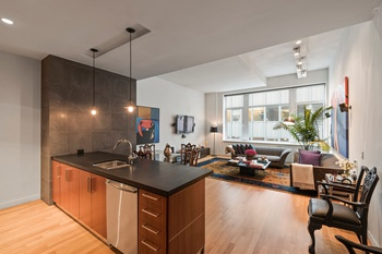Pristine and Spacious Convertible 3-bedroom in the Center of the Financial District